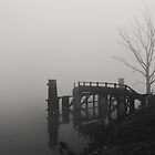 Boat Dock in Need of Repair by Richard  Leon