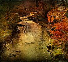 Looking Downstream by hampshirelady