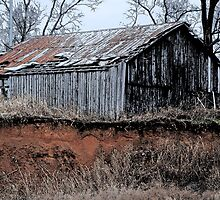 Old Vintage Spring Hill, Tennessee Barn by Phil Roberson