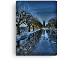 Trees of the Zugersee II Canvas Print