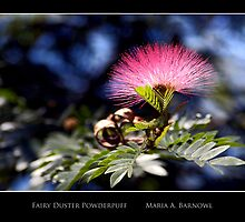 Fairy Duster Powderpuff - - Posters & More by Maria A. Barnowl