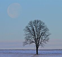 Moonset by Tom Clark