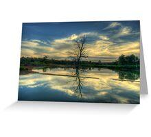 Wetland Dreaming Trees - Wonga Wetlands, Albury ,  Australia - The HDR Experience Greeting Card