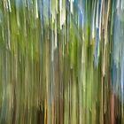 Eclat by Impressionista