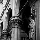 Sad Statue,Siena,Italy. by Davide Ferrari