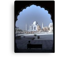 The Taj Canvas Print