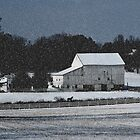 Winter Shadows by Gordon  Beck