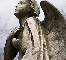 Angel memorial in winter - vertical by tracyannjones