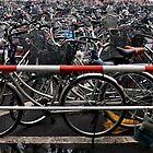 Bikes every where! by ebwitwicki