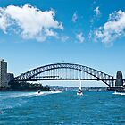 Life on the Harbour - Sydney Harbour by clearviewstock