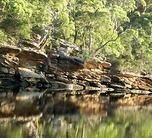 Trees, Rocks and Water, Royal National Park, Sydney, NSW, Australia. by kaysharp