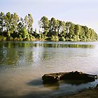 Rogers Landing - Willamette River, Newberg, Oregon by cratermoon