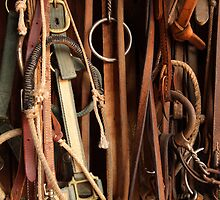 Tack Equipment by Dale O'Dell