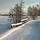 Winter Road by ilpo laurila