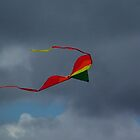 Kites and Clouds... by Lonnie Ornie
