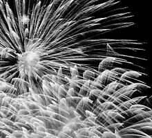 Firework Explosion (Black & White) by Richard Lam
