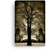 One, Two or Tree? Canvas Print