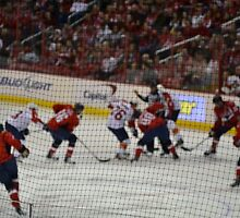 Washington Capitals by IntriguePhotog