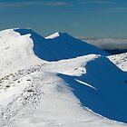 Frozen Peaks by demigod
