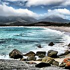 Tasmania # 1 by GUNN-PHOTOS
