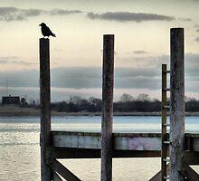 Vantage Point. by Lilian Marshall