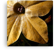 Study in Ochre: To Paint a Flower Canvas Print