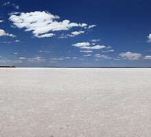 Lake Hart, South Australia, Australia by Andrew Brooks