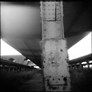 22 - holga by iannarinoimages