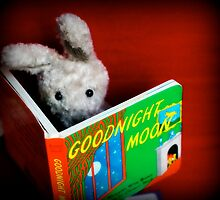 Bunny is a bookworm by NEmens