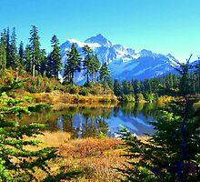 """""""Fall In The Cascades"""" by Lynn Bawden"""