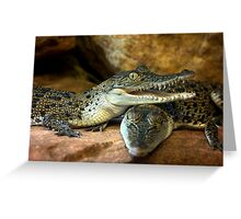~Little Crocs~ Greeting Card