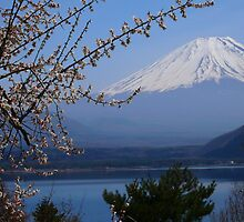 Mount Fuji by supergold
