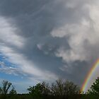Rainbow With Big White Clouds and Trees by Lisa Diamond