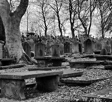 A Grave Experience by Sandra Cockayne