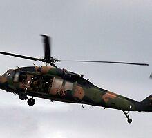 Blackhawk Flyby by Bairdzpics