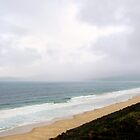 Bruny Island Mist by Julie Sleeman