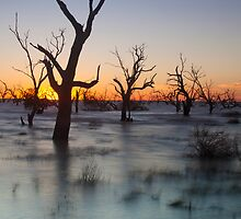 Lake Menindee 002 by David  Lange