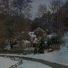 Winter Scene by Judi Taylor