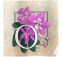 O is for Orchid Poster