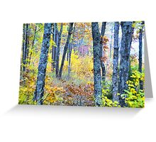 Painted Forest    Greeting Card