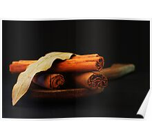 wooden spoon and cinnamon Poster