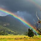 A Lost World and a Pot of Gold by Peter Doré