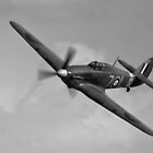 Sea Hurricane  by Cliff Williams