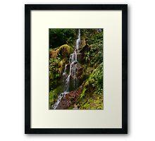 Hestercombe Waterfalls HDR Framed Print