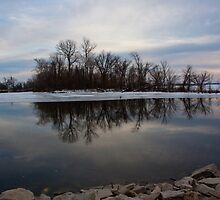 Island Reflection by Carol Bock