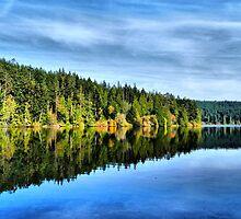 Pass Lake Fall Reflection Three by Rick Lawler
