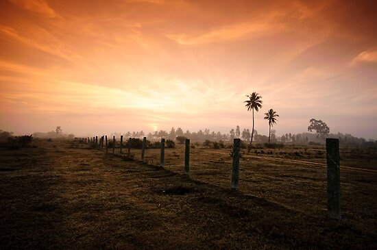 Divergent Dawn by Vikram Franklin