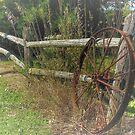 Wagon Wheel by wiscbackroadz
