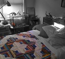 Jan Olivers Quilt of Freindship by David Mcleod