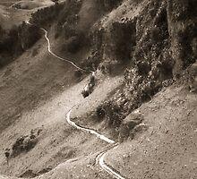 The Long Way Home by Malik Jayawardena
